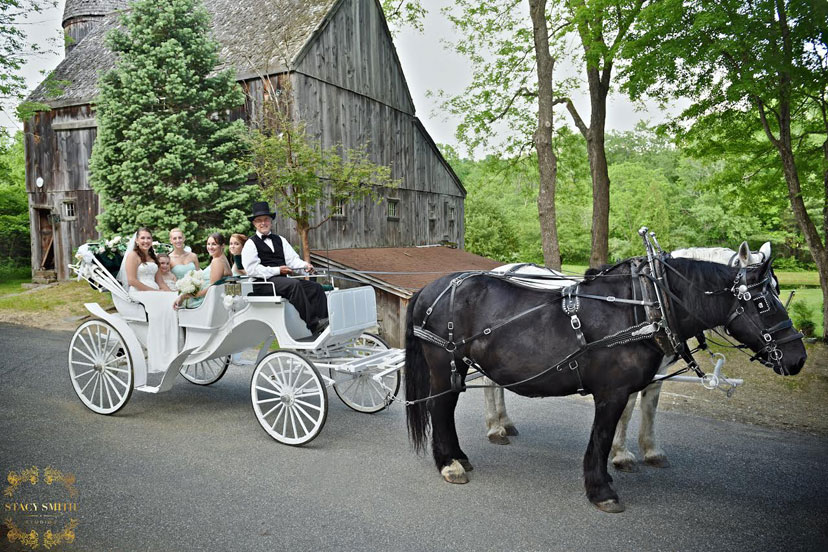 Cast Iron Collectible Horse-Drawn Funeral Hearse